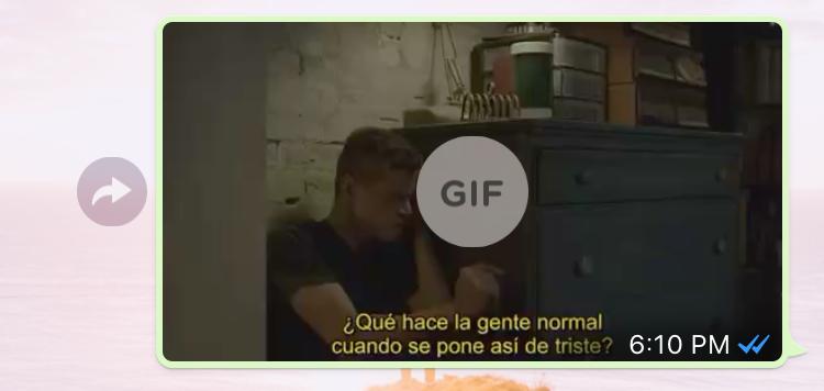 WhatsApp se actualiza con la función de GIF