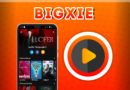 Bigxie, ver películas y series gratis (contraseña Bigxie)