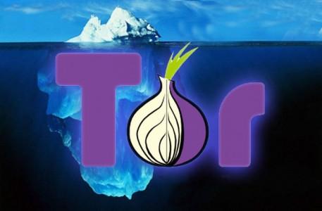 Tor (onion)